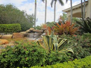 Agave (century) & Giant Orange Bromeliads
